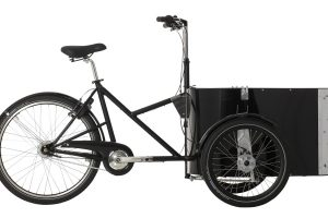Dutch cargo Bike Nihola Family
