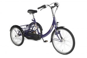 Dutch cargo BIke special need adult trike NDIS